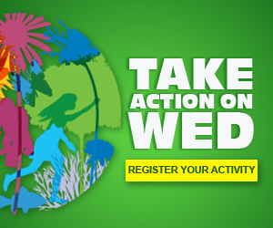WED - Take action logo